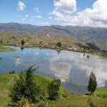 Partidas de Nacimiento en Santiago de Pischa